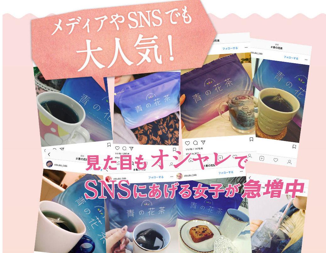 青の花茶_SNS